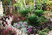 Exotic garden area with cycad ferns, sandstone path and animal figurines