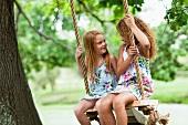 Smiling girls sitting in tree swing