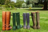 Pairs of boots standing in field