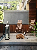 Sheltered wooden terrace with large lantern and dog in front of wooden loungers
