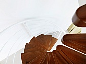 View of a modern circular staircase with wood treads and white metal bannister