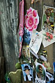 Collection of postcards and flower motifs pinned on old wooden wall