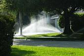 Sprinkler bewässern den Rasen vor einem Haus