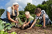 A mother and two children gardening