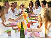 People having dinner in a field