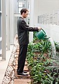Business man watering plants at office
