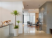 Hallway and interior minimalistic modern home