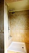 Tiled shower area in bathroom (Villa Octavius, Lefkas, Greece)