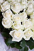 A bunch of white roses
