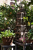 Vintage birdcage, wicker planter and plant pots on wooden stools in garden