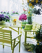Summer mood in a conservatory - modern patio furniture in green and flower pots with assorted flowers