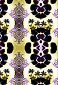 Kaleidoscopic pattern (print)