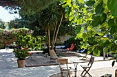 Idyllic outdoor area with multiple areas for sitting and shady trees