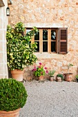 Potted plants outside traditional Finca with stone facade