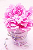 Peony in a container wrapped with felt and decorative ribbon