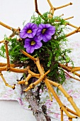 Flower arrangement made of dried mistletoe stems and dwarf petunia flowers