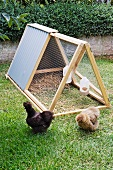 DIY chicken coop with hanging feed and water dispensers