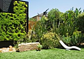 Garden with luxuriant, diverse planting and green wall of Sedum 'Gold mound'