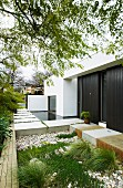 Modern residential house with dark wood-clad walls and urban front garden