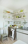 White and green stacked crockery on corner shelves and playful dog in bright, sunny kitchen