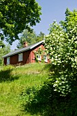 View from meadow of small, Scandinavian wooden cabin in summer sunshine