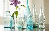Flaschensammlung mit lila Blüte