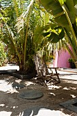 Wooden deckchair shaded by palm plants in sandy courtyard with round paving stones