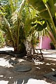 Liegestuhl aus Holz unter Palmen im sandigen Hof mit runden Pflastersteinen
