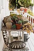 Vintage Arrangement mit Tonkrügen und Pflanzen auf kleiner weißer Veranda