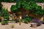 Mediterranean garden with simple wooden bench, flowering bushes and espalier tree on stone wall