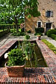 Plants in pond with terracotta brick border in garden of French country house