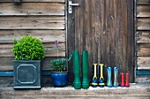 Wellington boots and plant pots by the front door