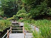 Simple wooden path by a pond in an idyllic landscape (Tea Garden, Portland)