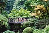 Kleine Holzbrücke im traditionell japanischen Stil (Tea Garden, Portland)