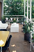Designer furniture and planters on balcony