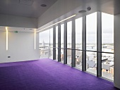 Empty room with purple carpet in contemporary building with steel and glass facade