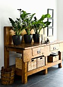 Potted plants on rustic wooden console table with drawers and storage baskets on dark grey tiled floor of foyer