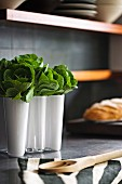 Leafy vegetables in white, designer Aalto vase