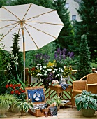 Wicker furniture, picnic basket, parasol and various plants on balcony
