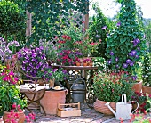 Mediterranean-style garden terrace with various terracotta pots and magnificently flowering plants