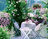 Sunny seating area amongst fragrant roses and pink flowering hanging baskets
