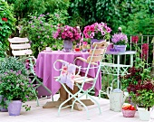 Corner of balcony with purple flowering plants and matching tablecloth on balcony table