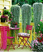 Purple table and chairs on summery balcony below plants cascading from hanging baskets