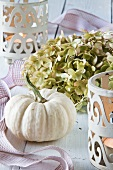 Autumnal table decoration with an ornamental squash and hydrangea flowers