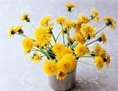 Vase of cut dandelions