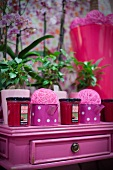 Decorative items, scented candles and house plants on pink cabinet