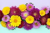 Flower arrangement of yellow marigolds and red and pink asters
