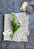 Chamomile, valerian and flowering potato shoot with labelled tag on linen cloth