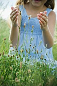 Little girl catching butterfly on wild flowers