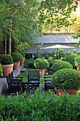 Mediterranean garden with boxwood planters and black outdoor patio chairs